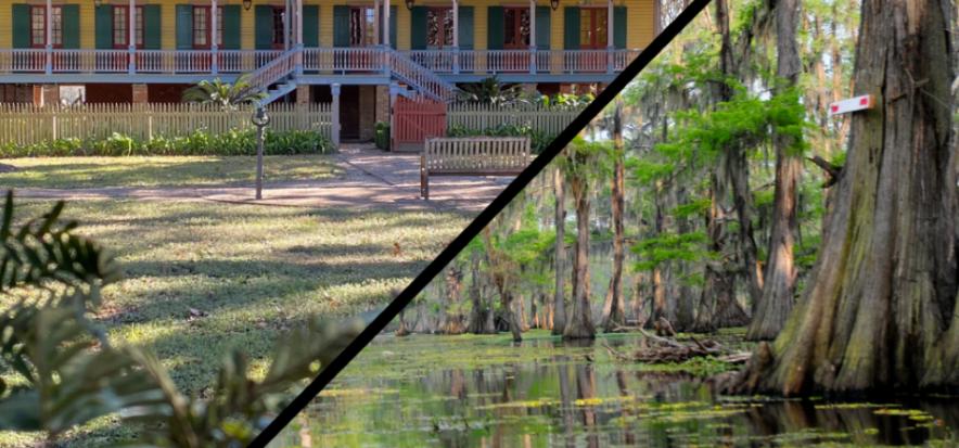 Laura Plantation and Swamp Tour