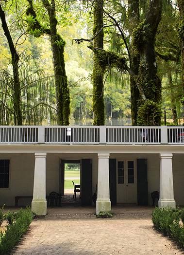 Whitney Plantation & Swamp Tour Boat